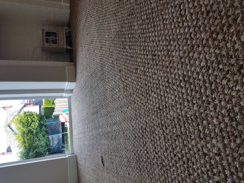 Alternative carpet fitted in worsley.