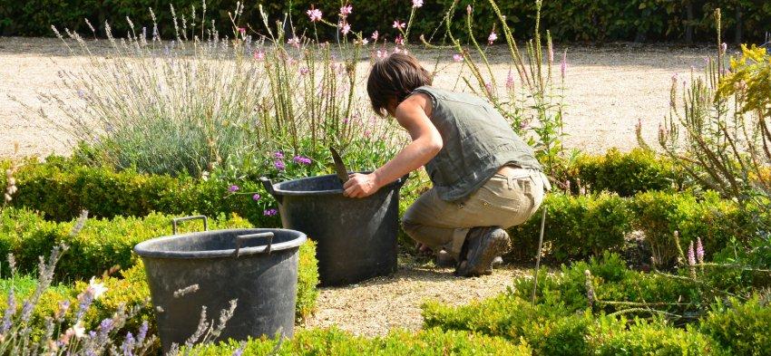 Jardinier à domicile  at Nancy